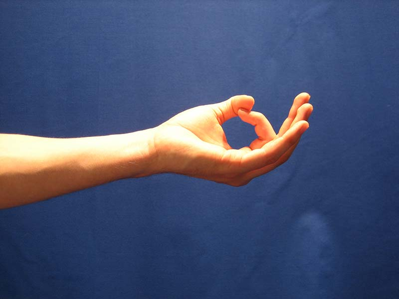 The Power and Science of Mudra – Smart Safe Yoga